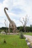 Prehistoric diplodocus. Huge prehistoric diplodocus in full size Stock Photo