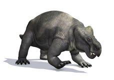 Prehistoric Kannemeyeria vector illustration