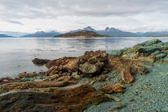 Prehistoric landscape in Patagonia, South America Stock Image