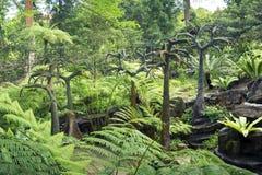Prehistoric landscape Stock Images