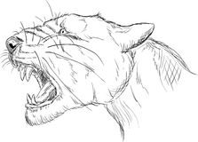 Prehistoric lion head Stock Photography