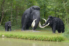 Prehistoric mammoths Royalty Free Stock Images