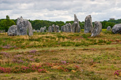 Prehistoric megalithic menhirs alignment in Carnac Stock Images