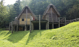 Prehistoric pile-dwelling Royalty Free Stock Photo