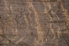 Prehistoric rock carvings, Italy royalty free stock photography