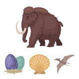 Prehistoric shell, dinosaur eggs,pterodactyl, mammoth. Dinosaur and prehistoric period set collection icons in cartoon. Style vector symbol stock illustration Stock Photos