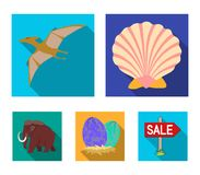 Prehistoric shell, dinosaur eggs,pterodactyl, mammoth. Dinosaur and prehistoric period set collection icons in flat. Style vector symbol stock illustration Stock Image