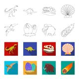 Prehistoric shell, dinosaur eggs,pterodactyl, mammoth. Dinosaur and prehistoric period set collection icons in outline. Flat style vector symbol stock Stock Photos