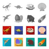 Prehistoric shell, dinosaur eggs,pterodactyl, mammoth. Dinosaur and prehistoric period set collection icons in. Monochrome,flat style vector symbol stock Royalty Free Stock Photo