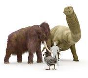 Prehistoryczni Wymarli zwierzęta istota ludzka rozmiaru porównanie Fotografia Stock