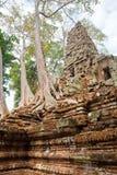 Prei van Sambor kruk, Kompong Thom, Kambodja Stock Afbeeldingen