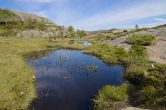 Preikestolen swampland Stock Image
