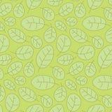 Preiselbeere treibt semless Muster Blätter vektor abbildung
