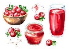 Preiselbeersaft, Stau, Marmelade und frische reife Beeren mit Blättern Übergeben Sie die gezogene Aquarellillustration, lokalisie Stockfotos
