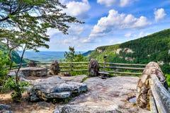 Preliminar negligencie no parque estadual da garganta de Cloudland foto de stock royalty free