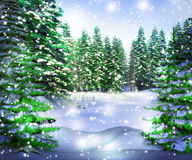 Premade Winter Backdrop Stock Images