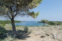 Premantura半岛海岸概要  免版税图库摄影