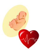 Premature Baby Fetus Electrocardiogram. Red heart & human embryo on withe background Royalty Free Stock Photos