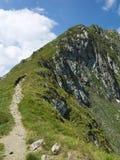 Première arête de montagne en Roumanie Photographie stock libre de droits