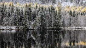 Première neige à la rivière Image libre de droits