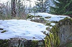 Première neige Photos stock