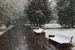 Première neige Photo libre de droits