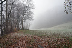 Première neige dans Liectenstein images libres de droits