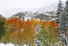 Première neige en montagnes photographie stock libre de droits