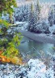 Première neige en montagnes photos stock