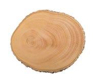 Première vue d'un tronçon d'arbre image stock