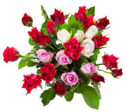Première vue de bouquet coloré de roses Photos stock