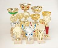 Premi di sport immagine stock libera da diritti