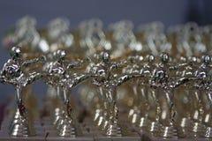 Premi per i concorsi di karatè Fotografia Stock Libera da Diritti