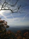 Premier arbre d'automne et soleil et ciel bleu photo libre de droits