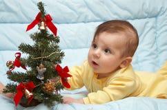 Premier arbre de Noël Photographie stock libre de droits