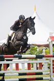 Premier Cup Equestrian Show Jumping Stock Photography