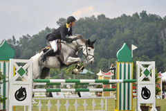 Premier Cup Show Jumping Stock Image