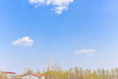 Premier ressort avec le ciel bleu et les nuages blancs Photos stock