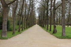 Premier ressort en parc Image stock