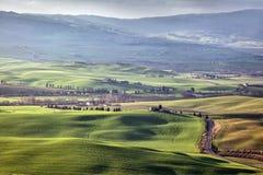 Premier ressort en Toscane, l'Italie Photo libre de droits