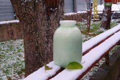 Premiers neige et lait Photo stock