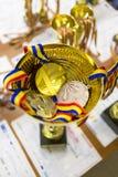 Premio e medaglie Fotografia Stock Libera da Diritti