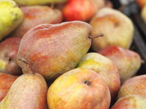 Premium big Williams pears Stock Photos