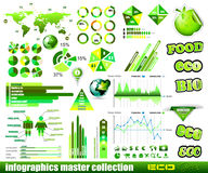 Premium Eco Green infographics master collection: Royalty Free Stock Photos