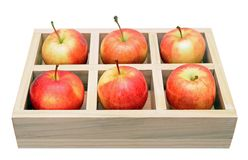 Premium gala apples Royalty Free Stock Photo