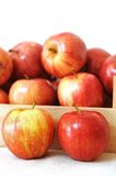 Premium gala apples Royalty Free Stock Images