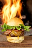 Premium Gourmet bacon cheeseburger Stock Image
