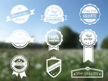 Premium and High Quality transparent Labels Royalty Free Stock Image