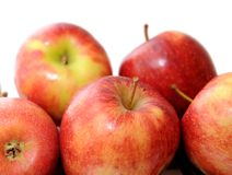 Premium  jonagold apple Stock Images