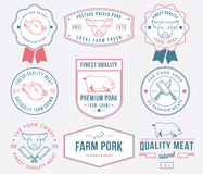 Premium pork meat colored Stock Image